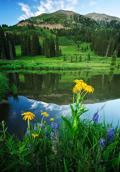 Washington Gulch Reflections - Colorado On Top of the World Tour - Jerry Negele - July 2010