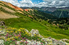 Eastern San Juan Mountains from Red Mountain#3 Saddle - Colorado Wildflowers - Sue Cole - July 2015