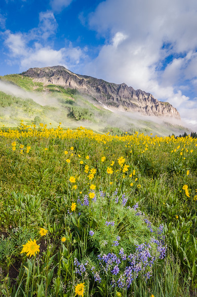 Glorious Morning Beneath Gothic Mountain - Gothic Mountain, Colorado - Linda Hanley - July 2015