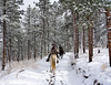 Horseback Riders on Snowy Trail_2714 LVRanch©DonnaLovelyPhotos com -2714