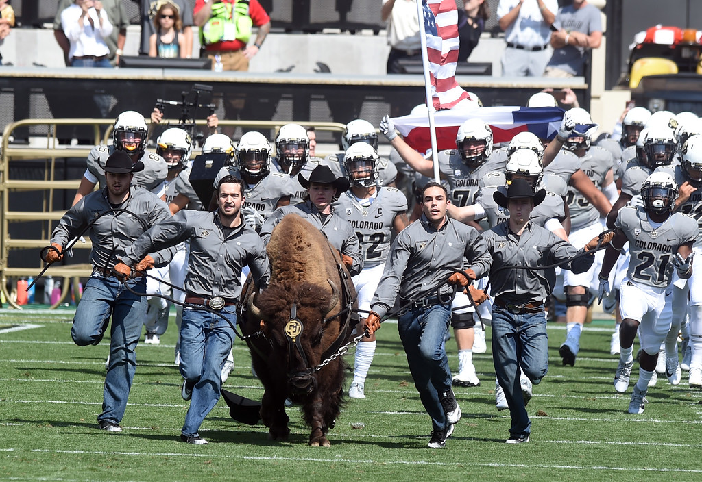 . Here comes Ralphie during the game with Texas State on Saturday. For more photos, go to buffzone.com.  Cliff Grassmick / Staff Photographer/ September 9, 2017