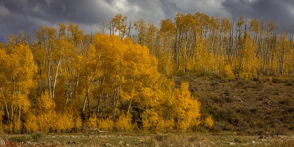 Aspen, Last Dollar Road