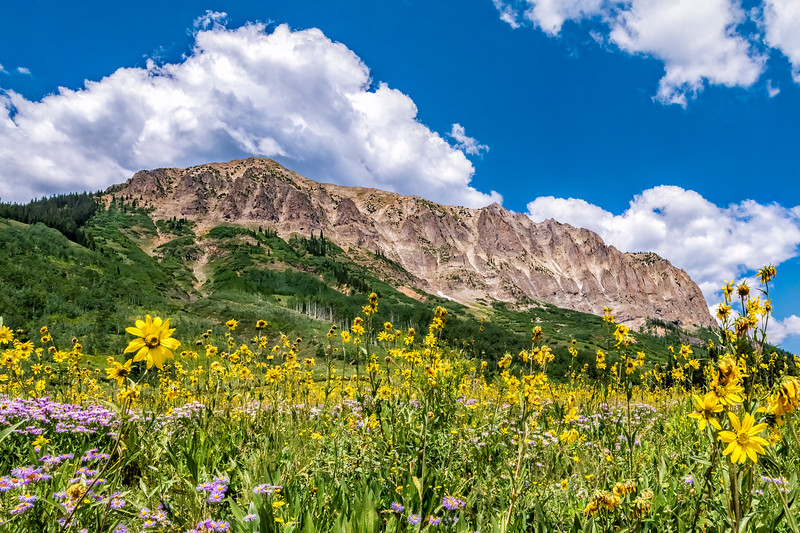 Gothic Mountain (12,631') – Crested Butte, Gunnison Co, CO