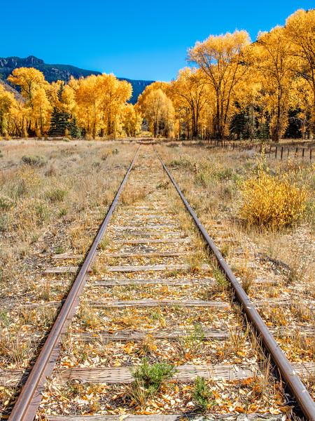 'On Track' - Denver & Rio Grand RR
