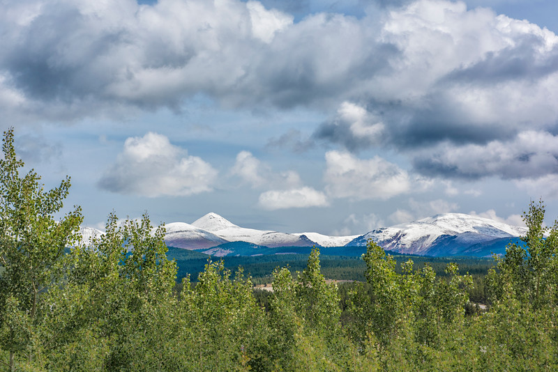 'August Vista'