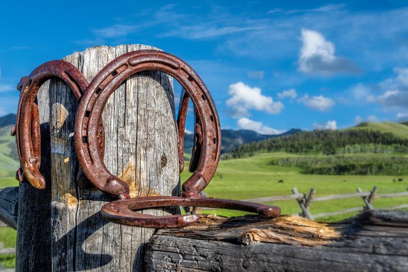Ranch Gate - Tom Miner Basin, Park Co, Montana