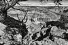 Vue du Grand Canyon. Plateau du Colorado/Arizona/USA