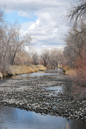 Rocky River Bed