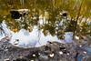 A side pond of Dinkle Lake on Mt. Sopris.