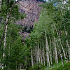 The backside of Sheep Mountain rises above an aspen grove near Scofield Pass in the Raggeds Wilderness Ares, Colorado.