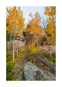 Aspen gold, Sundance Mountain-Palmer Lake Reservoir Loop