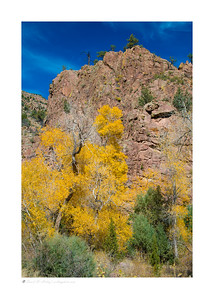 Autumn colors, Phantom Canyon Road, CO
