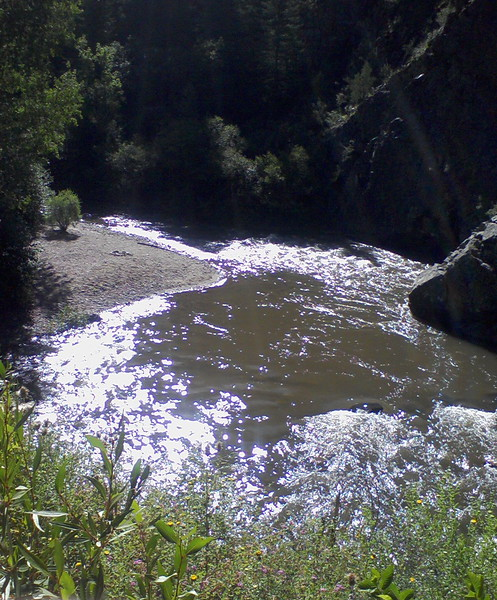 Stream in Colorado