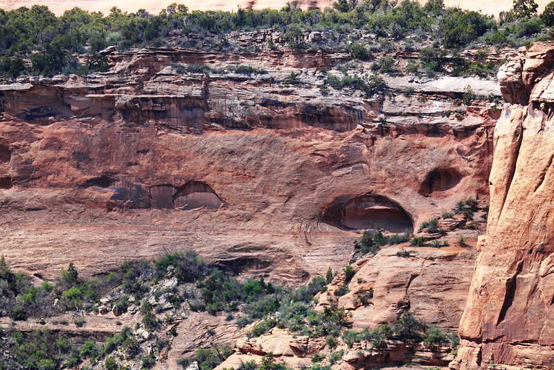 Arches in the Cliff