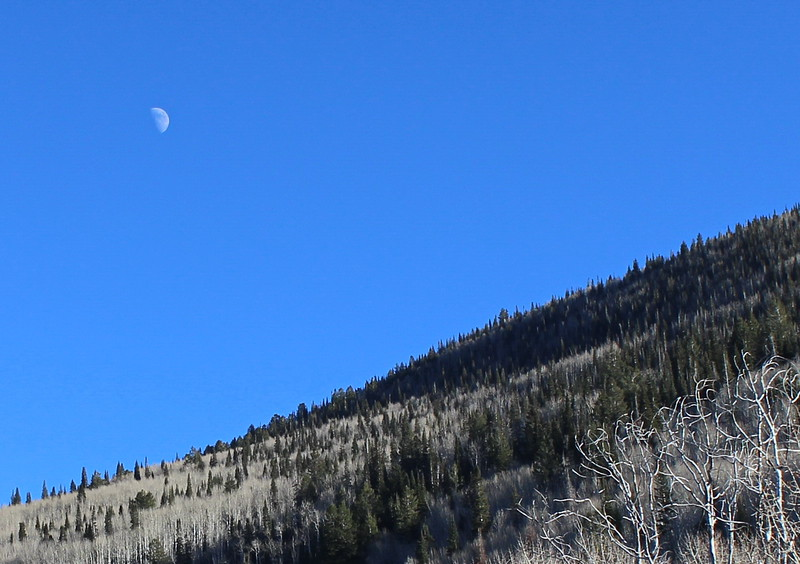 Afternoon Moon over Grand Mesa