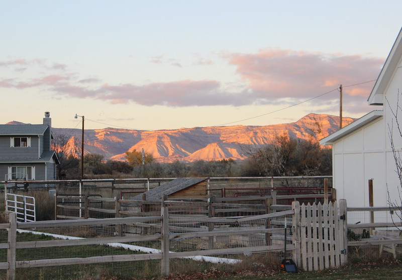 Barn and Horse Paddock