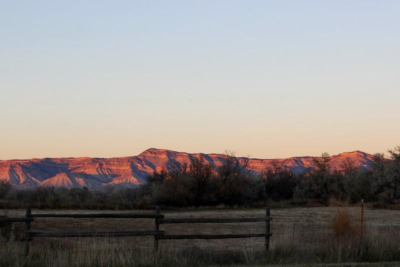 Horse Paddock at Sunset