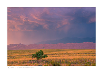 Late afternoon summer thunderstorm, Great Sand Dunes National Park, CO