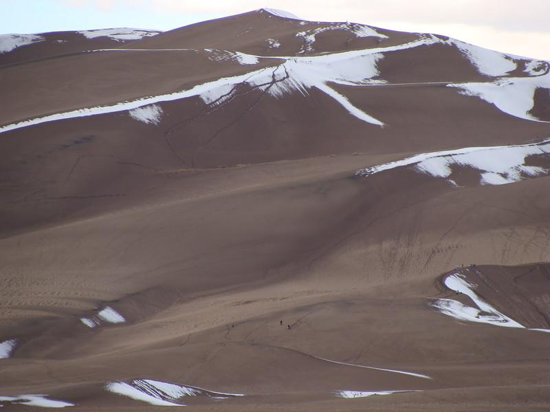 Sand Dunes in November
