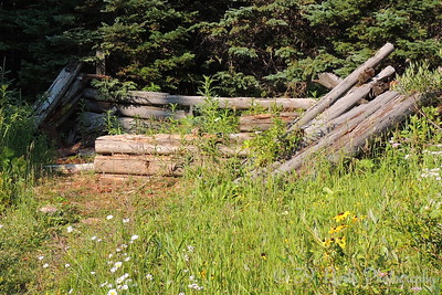 Remains of a log cabin