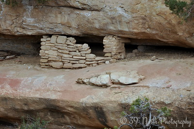 Spruce Tree House cliff dwelling at Mesa Verde National Park