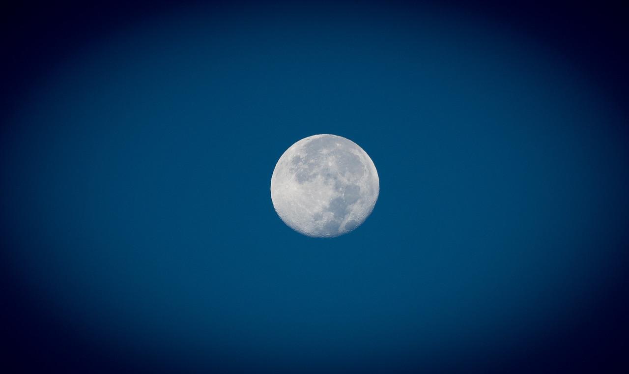 Mid-autumn moon!