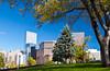 Buildings and park in downtown Denver, Colorado, USA, America.