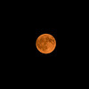 Blood red moon from the fires in Montana and Canada.