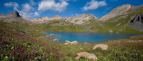 Ice Lake Wildflowers Late August, 2008 3 image stitch - crop