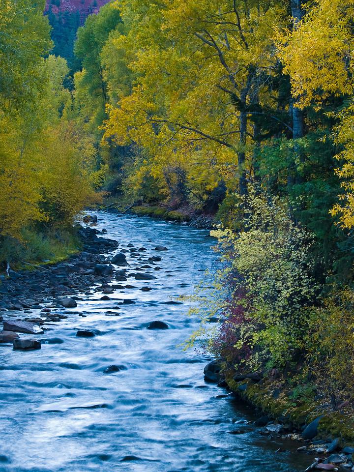 Telluride Stream