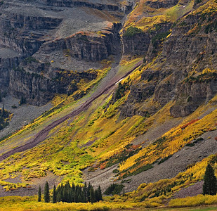Tundra, Fall color View from Crater Lake Maroon Bells-Snowmass Wilderness