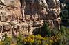 Mummy House ruins in Mesa Verde National Park, Colorado, USA, America.