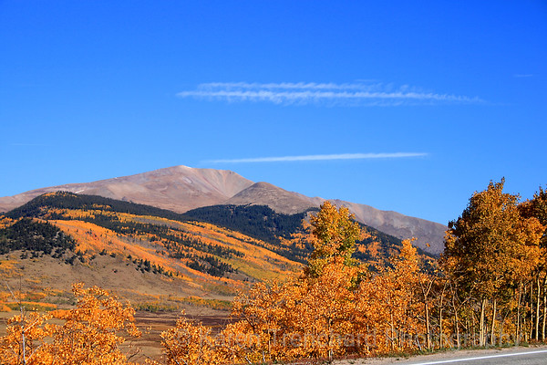 Mount Silverheels From Red Hill Pass Fall Leaves