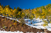 Fall foliage on hill sides and snow near the Rabbit Ears Pass, Colorado, USA, America.