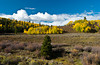 Flat Tops Scenic Byway between Yampa and Buford, Colorado, USA, America.