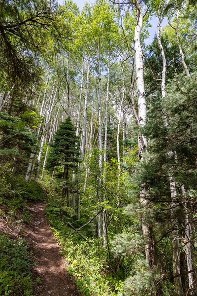 Cascade Chasm Trail