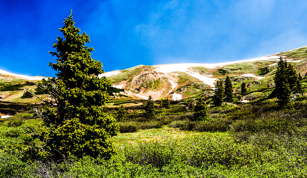 Up Loveland Pass