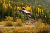Mountainside mine with fall foliage near Silverton, Colorado, USA, America.