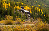 Mountainside mine with fall foliage near Silverton, Colorado, USA, America.