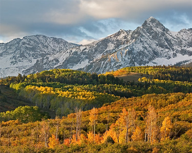 Fall Colors - Dallas Divide - morning Sneffels Wilderness, San Juan Mountains, CO