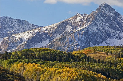 Fall Colors - Dallas Divide - Telephoto Sneffels Wilderness, San Juan Mtns., CO