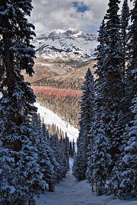 Ski Run, Telluride