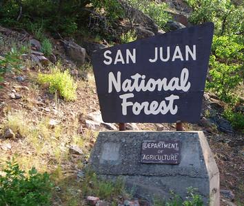 Entering the San Juan National Forest.