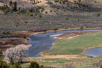 The Colorado River near Radium, Colorado, on April 26, 2019. Photo by Mitch Tobin/The Water Desk