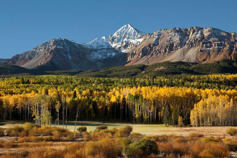 Wilson Peak and yellow aspens