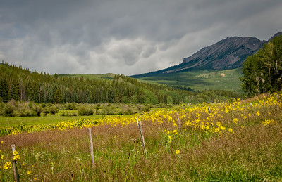 Outside Crested Butte, CO