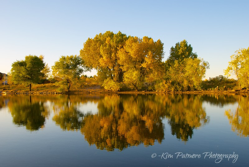 South Platte River Reflections