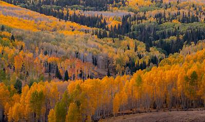 Telluride Ranch