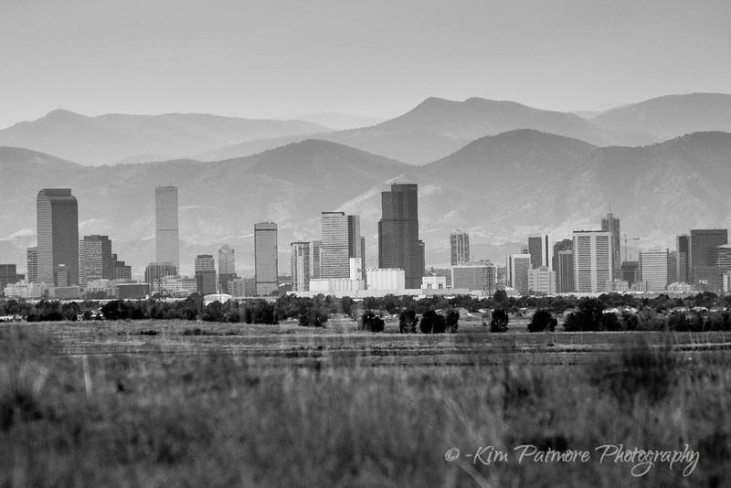 Rocky Mountain Arsenal Refuge - Denver B&W-8365