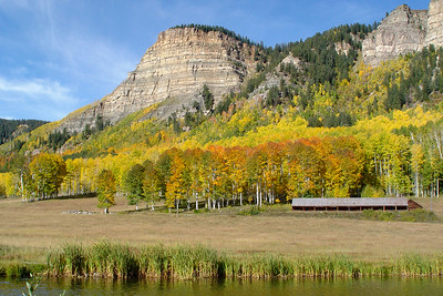 Fall Colors on the Durango to Silverton Hwy, CO
